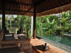 ubud virgin villa-private villa 3 bedroom-pool view