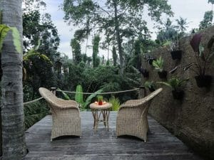 ubud virgin villa-private villa for rent in ubud-relaxing place