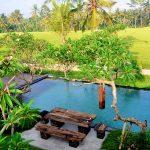 ubud virgin villa-villa 3 bedroom-the view
